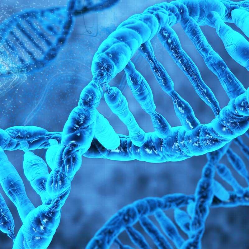 DNA and Tai Chi